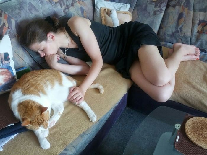Catwoman Cats 🐱 Cat Lovers Cats Of EyeEm Cat♡ Cats Cat Girlfriend Check This Out Sleeping Cat Sleepingbeauty Check This Out Relaxing Pets Authentic Moments Crazy Cat Lady