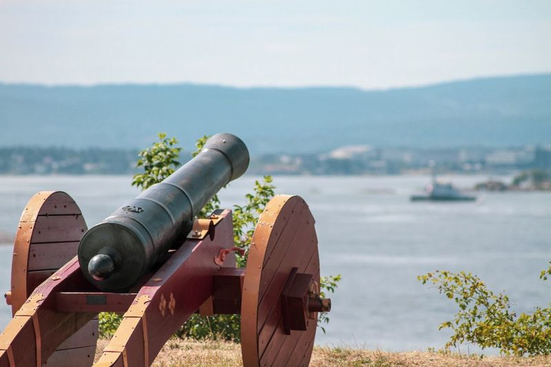 Cannon By Lake