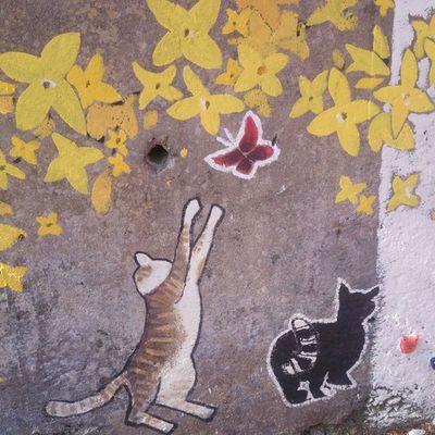 기여운 냐옹이! 설날 당일이라서 다같이 가족들과 유달산에서 ~ 일상 고냥이 고양이 유달산 벽화 새해복많이받으세요