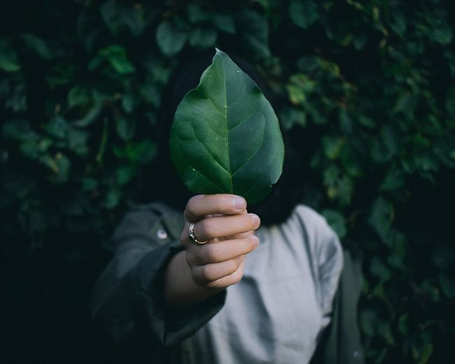 Woman holding leaf over face against plants