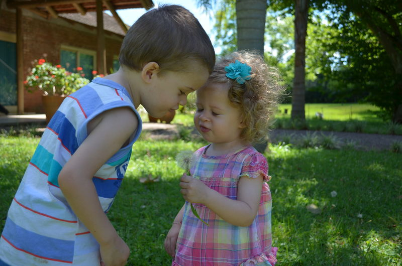 Brothers Love Blond Hair Nature Happiness Children Boy Girl