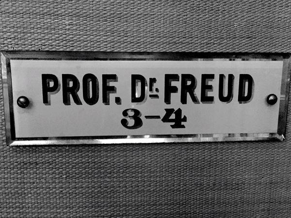 Vienna Freud Door Sign