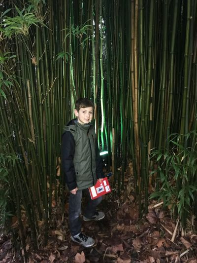 My boy and I wandering around the gardens at national trust gardens Leaves Lines Green Color Family Time Trelissick Gardens Growth Boy And Bamboo EyeEm Gallery Portrait