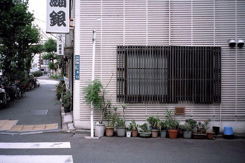 Kodak Portra Tokyo Streetphotography Walking