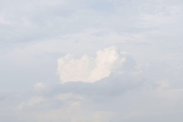 white sky, soft