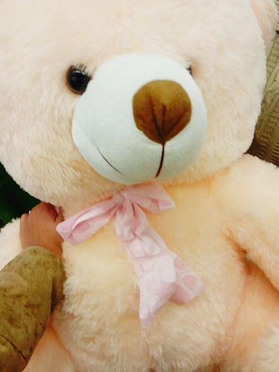 Teddybear Happyteddyday 🐻 muaahhh... Love all my followers... 💞💞❤❤❤💓💓💓😍😍😘😘 loads of love friends.... ☺ ☺ ☺