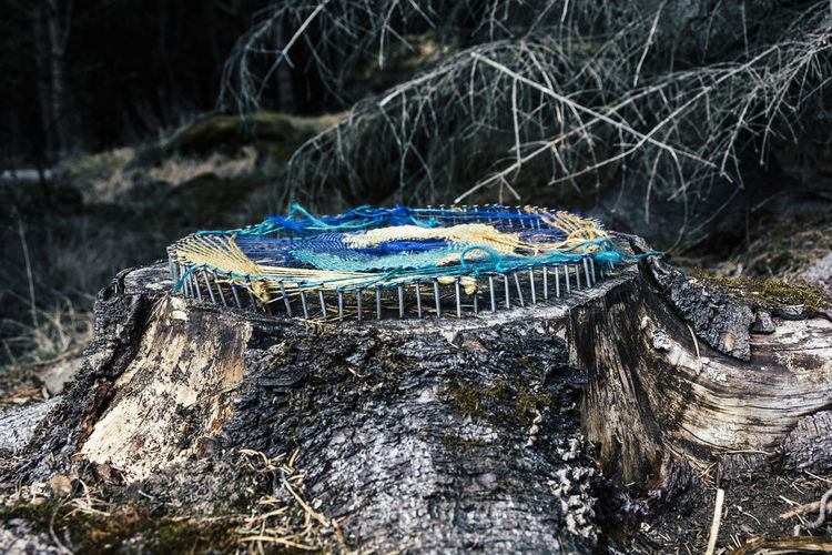 Crochet On Tree Stump At Forest