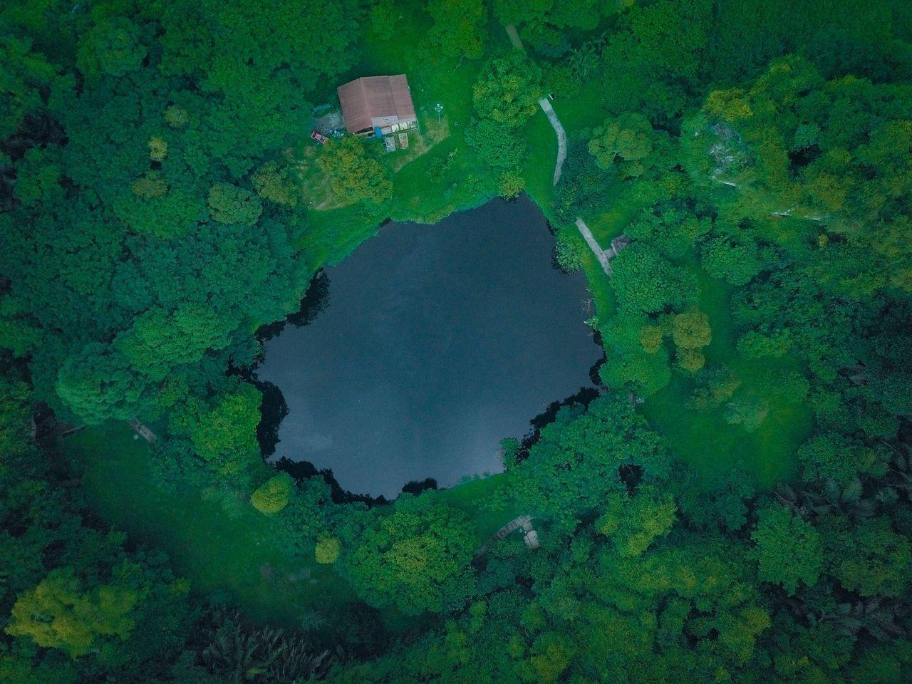 FULL FRAME SHOT OF LAKE WITH GREEN LEAF