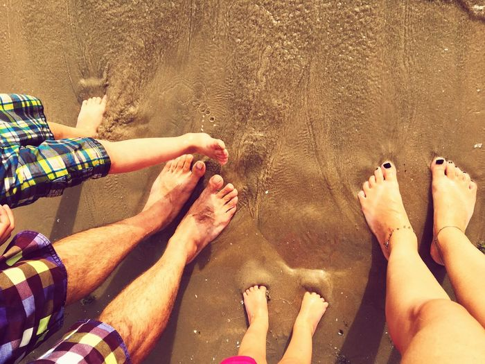 Beach days Sandbanks Ontario Lake Ontario Sandbanks Beach Family Beach Human Leg Barefoot Low Section Human Body Part Outdoors Togetherness