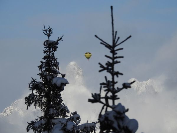 Beauty In Nature Branch Day Growth Hot Air Balloon Mountain Nature No People Outdoors Sky Tree