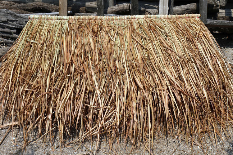pile of vetiver for hut roof. panel of vetiver for hut roof, straw roof hut panel Abundance Brown Business Close-up Day Dry Factory Field Focus On Foreground Food And Drink Hut Roof Hut Roof House Industry Land Large Group Of Objects Nature No People Outdoors Panel Of Vetiver Stack Still Life Sunlight Vetiver Wood - Material