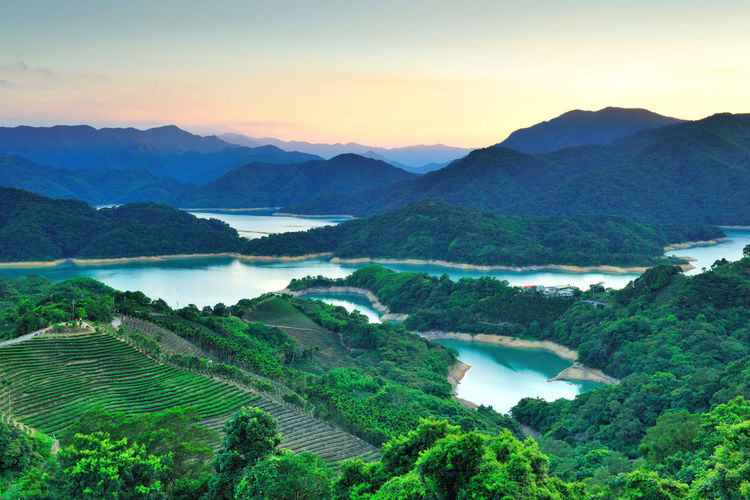 Reservoir between green mountains Scenics - Nature Mountain Tranquil Scene Beauty In Nature Tranquility Sky Environment Landscape Mountain Range Sunset Water Nature Idyllic No People Tree Plant Land Non-urban Scene High Angle View Outdoors Plantation Reservoir Tea Garden Planting Water Resources