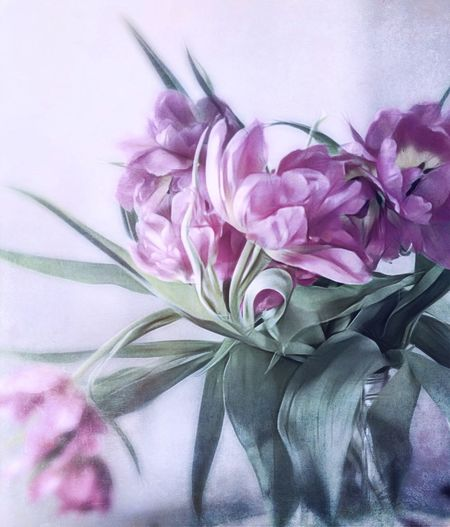with you I am my most beautiful self • . Flower Pink Color Purple Petal Close-up No People Indoors