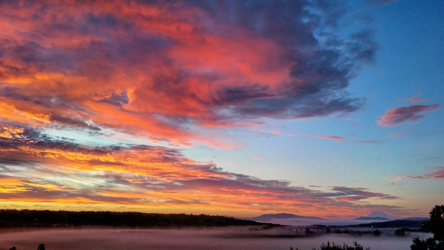 Seattle Livewashington Pacific Northwest  First Eyeem Photo Sunrise