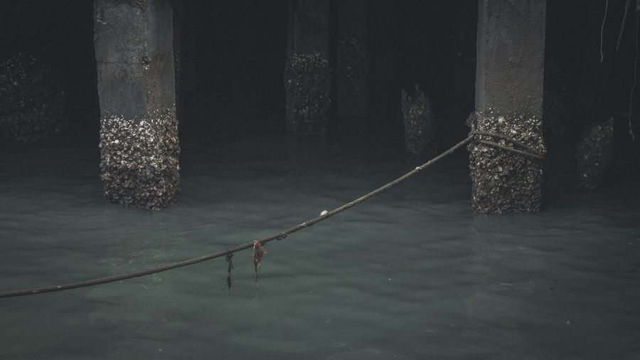 Rope hanging over lake