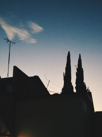 Give up the Ghost Ciudad Satélite Clouds And Sky Estado De México IPhone IPhoneography Light Blue Mexico Mobile Phone Camera Nubes Pine Trees Silhouette Sunset TV Antenna VSCO Vscocam
