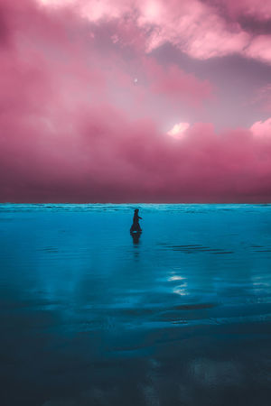 Oregon Beach Ocean Walking Centered Moon Moody Dreamy New Clouds Colorful People EyeEm Best Shots EyeEm Nature Lover Eye4photography  EyeEm Selects Getty Images Getting Inspired Symmetrical Water Paddleboarding Sea Sunset Full Length Oar Nautical Vessel Adventure Blue Silhouette Seascape