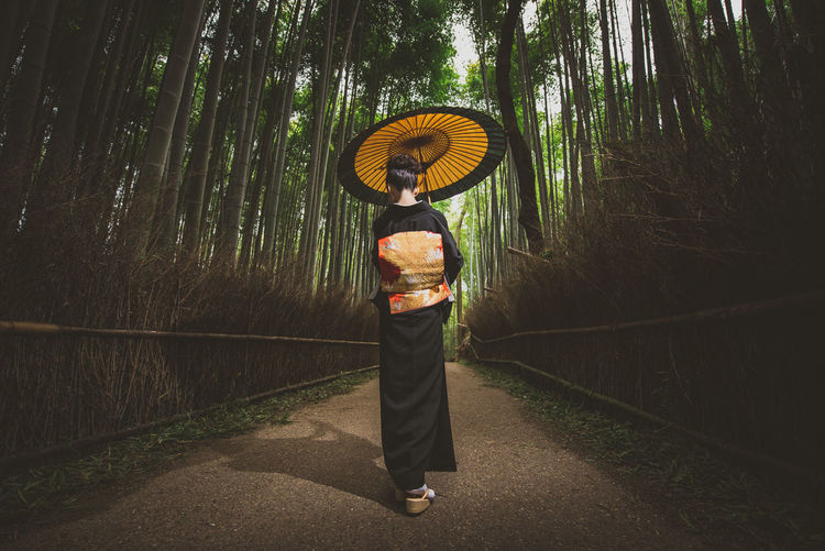 Rear view of woman with umbrella standing amidst trees