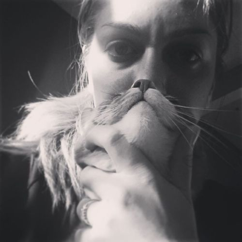 My attempt at a Catbeard .