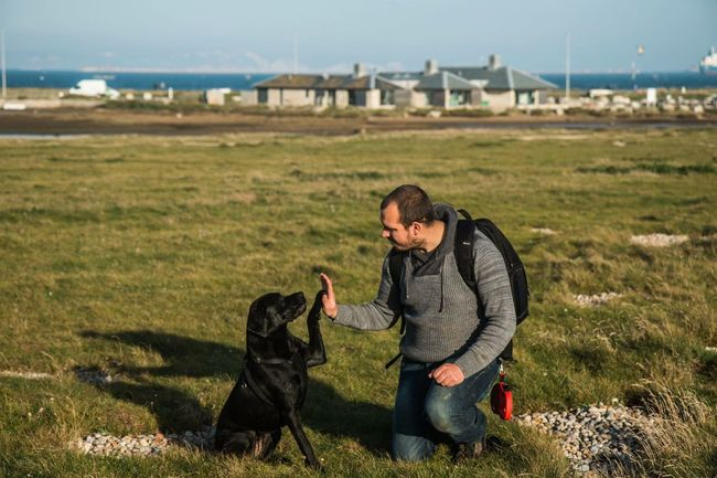 Rosie & Me. High Five! Animalphotography Pet Photography  EyeEm Animal Lover That's Me My Dogs Are Cooler Than Your Kids Fooling Around Portland Bill Coast Sea