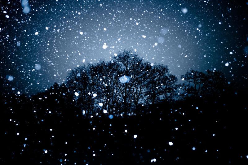 Nightland, Oslo, Norway City Cityscape Fairytale  Norway Oslo Winter Cold Temperature Flash Forest Night No People Snow
