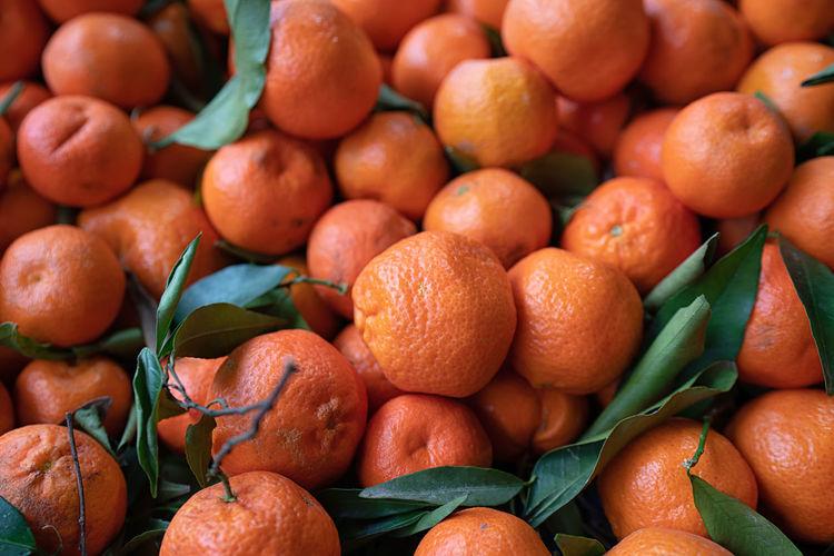 Tangerine Iznik