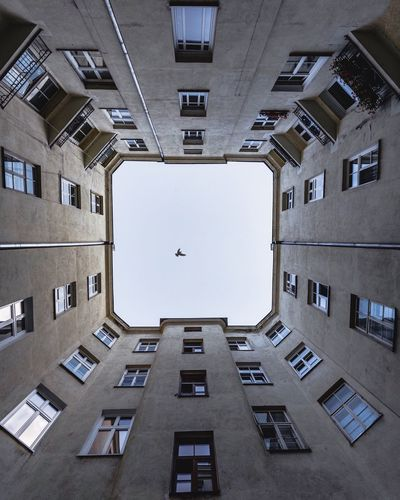 Architecture Low Angle View Cityscape VSCO EyeEm Best Shots EyEmNewHere Modern Urban Skyline Outdoors Lookup Lookingup Lonely Bird Built Structure Windows