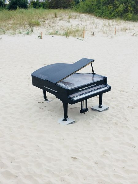 Flügel am Strand Land Sand Beach Nature Day Park Seat Bench Empty No People Outdoors Absence Tranquility Park - Man Made Space Beauty In Nature High Angle View Field Musical Equipment Piano Plant