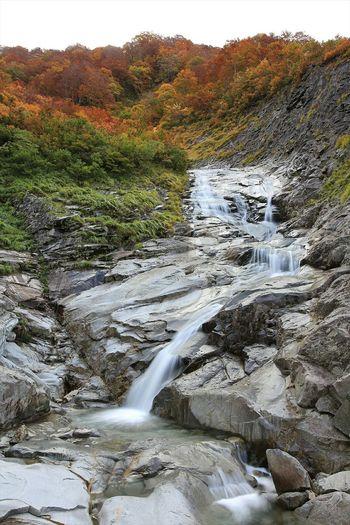 autumnal scene...滝と紅葉の絶景コラボ♪ Nature Mountains Waterfalls EyeEm Nature Lover Landscape Enjoying Life Autumn Leaves Popular Photos Photography Outdoor Photography