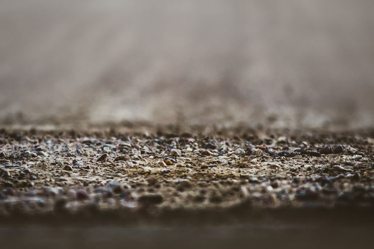 Selective Focus Close-up No People Textured  Full Frame Backgrounds Pattern Day Extreme Close-up Textile Surface Level Outdoors Macro Land Beach Carpet - Decor Rug Brown Rough Nature Concrete