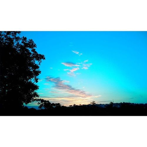Then it turns Deep blues Sky Clouds Tree Sun