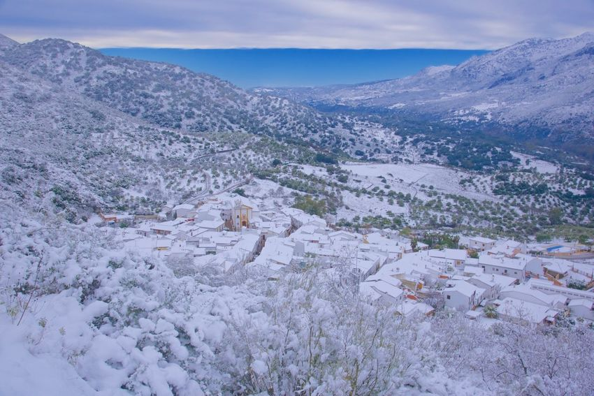 Snow in southern Spain. Andalucía Beauty In Nature Cloud - Sky Cold Temperature Day Jimera De Libar Landscape Mountain Nature No People Outdoors Pueblo Blanco Rural Scene Scenics Sky Snow SPAIN Tree Village White Color Winter