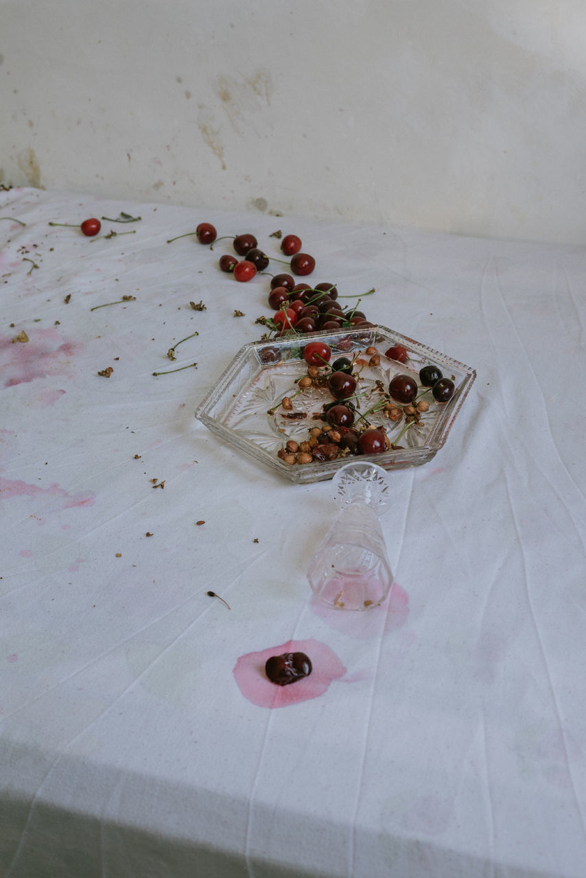 HIGH ANGLE VIEW OF DEAD FISH IN WATER ON TABLE