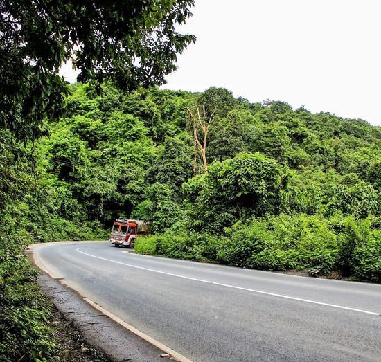 Transportation Plant Tree Road Mode Of Transportation Land Vehicle Green Color Nature Growth Motor Vehicle Day Beauty In Nature No People Sky Scenics - Nature Truck on the move Clear Sky Non-urban Scene Land Outdoors