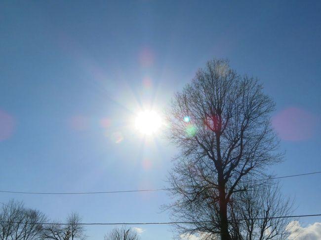 Sun Shining Like The Sun Sun Setting Warmthandsunshine Rays Of Light