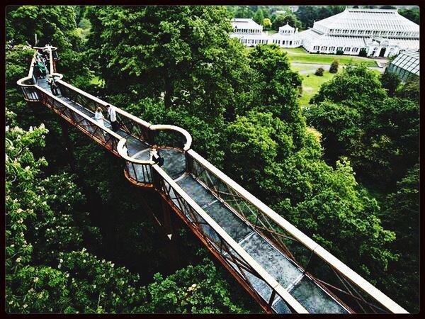 Kew Gardens Bridge Greenary