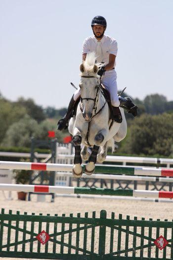 Saltando a caballo. Canonphotography Photography Photographer Canon Hipica Horse Caballos