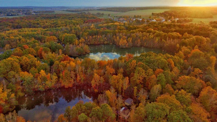Goldener Herbst Nature_collection Eyem Nature Lovers  Djiphotography Dji Drone Dji Phantom Eyemphotography Eyem EyeEm Nature Lover Sunsetporn Dji Beauty In Nature Scenics - Nature Plant Environment Tree Landscape Nature High Angle View Autumn Tranquility Aerial View Growth Land Tranquil Scene No People Day Water Change Mountain Outdoors
