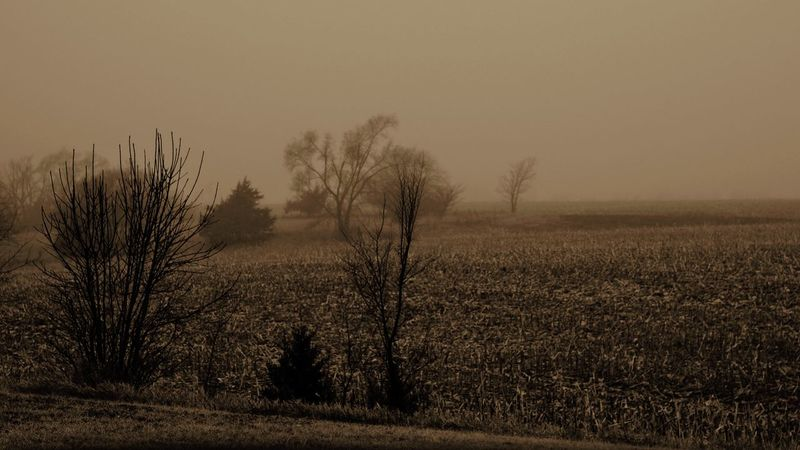 Visual journal January 2018 Village of Western, Nebraska Camera Work Canon FD 50mm F/1.8 EyeEm Best Shots FUJIFILM X-T1 Getty Images Photo Essay Quiet Places Rural America Village Of Western, Nebraska Visual Journal Wintertime Always Taking Photos Bare Tree Beauty In Nature Clear Sky Day Eye For Photography Field Foggy Morning Grass Landscape Manual Focus Manual Mode Photography My Neighborhood Nature No People Non-urban Scene Off The Beaten Path Outdoors Photo Diary Practicing Photography Rural Scene Scenics Sky Small Town Stories Tranquil Scene Tranquility Tree