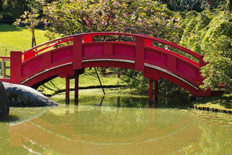 View of bridge over lake in park