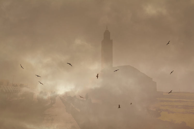 Hassan II Mosque, Casablanca. Casablanca Creativity Double Exposure Hassan II Mosque Morocco Animal Themes Animal Wildlife Animals In The Wild Architecture Backgrounds Beauty In Nature Bird Birds Buildings Coast Day Flock Of Birds Flying Large Group Of Animals Low Angle View Mid-air Mosque Nature No People Outdoors Seagull Sky Spread Wings Sunset Yellow Color