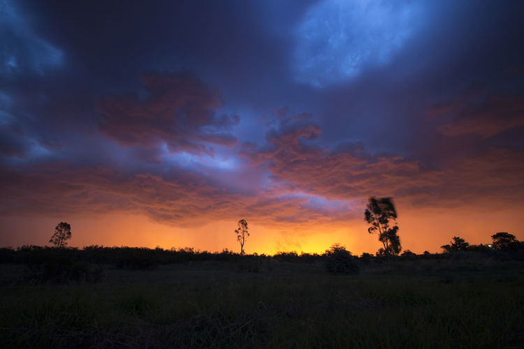 A storm approaching Bendigo, Victoria, Australia on sunset. February 2015. Storm Storm Chasing Beauty In Nature Cloud - Sky Day Field Grass Growth Landscape Nature No People Scenics Silhouette Sky Storm Approaching Storm Cloud Storm Clouds Sunset Tree