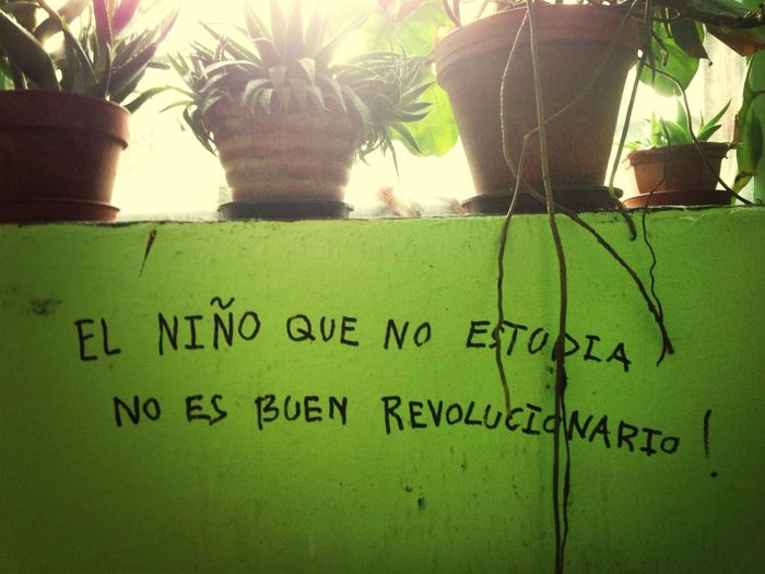 Revolution Sentence