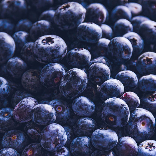 Surface is covered with a thick layer of blueberries. natural background.