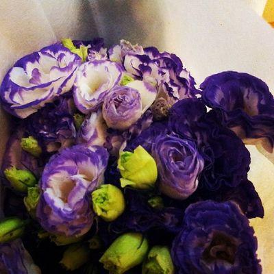 Always opt for fresh flowers :) Wear purple ur best purple attire then come to our event :) Nurulamarwedding