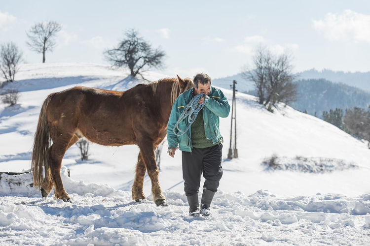 Full length of horse standing on snow covered land