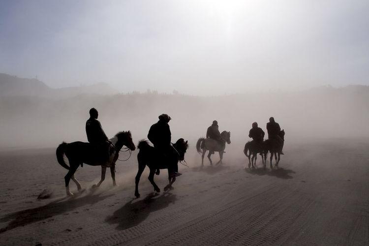 People riding horses on desert against sky