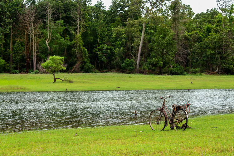 View of bicycle on riverbank