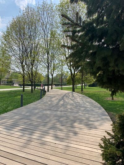 Moscow Muzeon Muzeonpark Diminishing Perspective Treelined Shadow City Sunlight Park - Man Made Space Direction The Way Forward Park Footpath Tree Nature Plant Path Pathway Springtime Spring