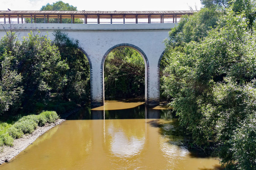 Bridge - Man Made Structure Park - Man Made Space Moscow Arch Aqueduct Summer City No People Water Tree река Russia Москва Яуза Travel Destinations Park Built Structure Architecture Outdoors Tree Day City Life River Landscape Cityscape Paint The Town Yellow